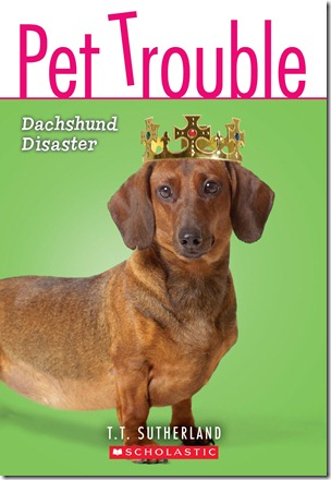 PetTrouble8 cover